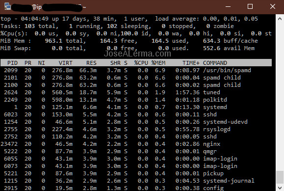 Terminal window with top output.